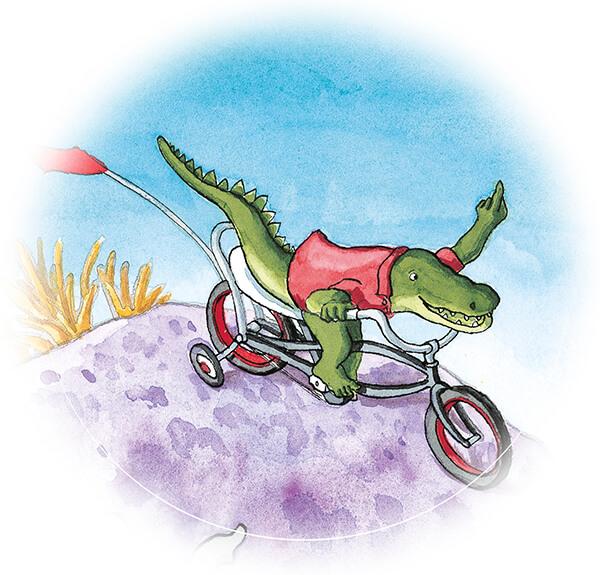 tiny-krook-fietst
